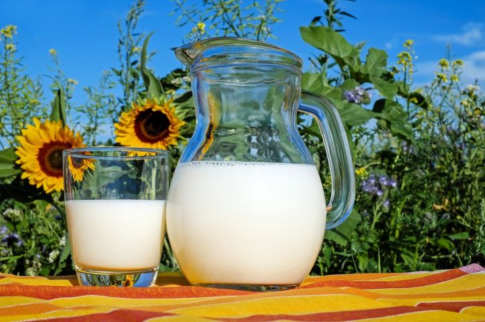 La leche es uno de los alimentos con más calcio pero no el único